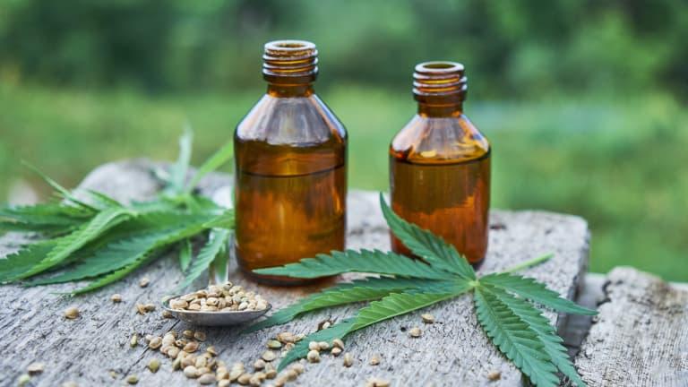 olio di cbd, semi e foglie di canapa