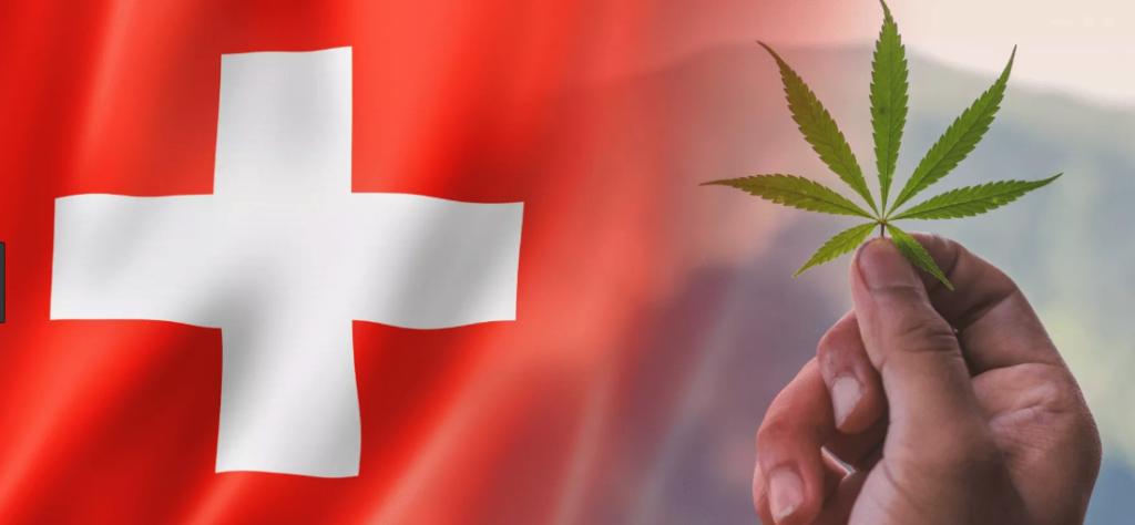 bandiera svizzera e cannabis