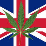 bandiera regno unito foglia di canapa
