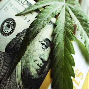 soldi e cannabis