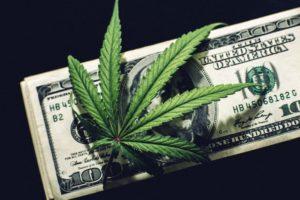 foglia di cannabis su dollaro