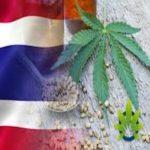 foglia di canapa e bandiera thailandese