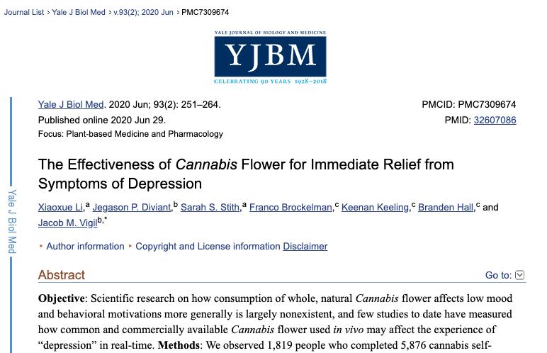 copertina studio yale cannabis e depressione